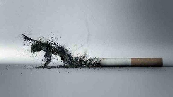 smok (23)
