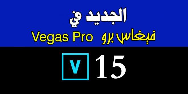 فيغاس برو 15