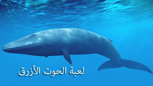 ما هى لعبة الحوت الأزرق التي تدفع للانتحار؟