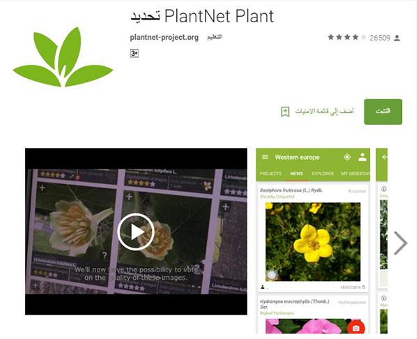 تطبيق معرفة أنواع النباتات PlantNet Plant
