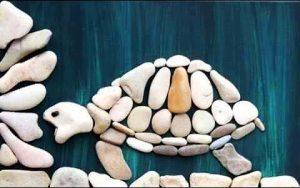 رسم سلحفاة بالحجارة