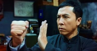 ip man movies